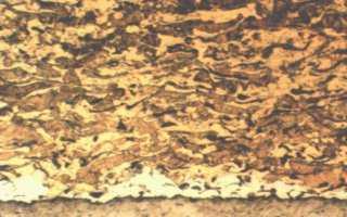 Microstructure of Flame Sprayed Copper Aluminium Composite ( aluminium bronze ) Coating