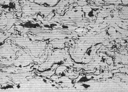 Microstructure of Metal Sprayed Nickel Coating